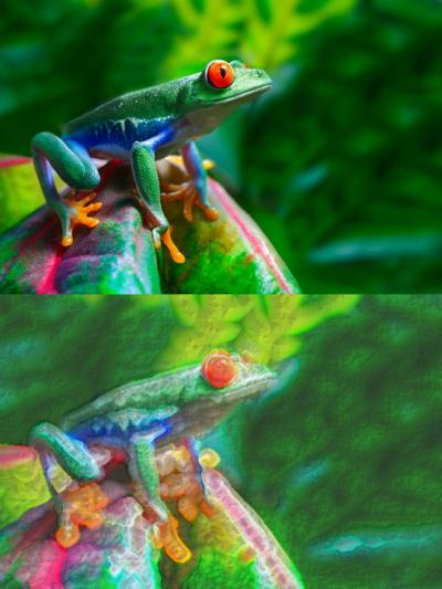 grow_frog.png
